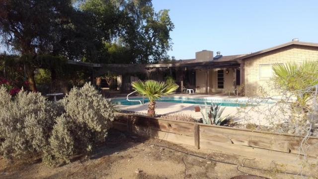 10210 N 64TH Place, Paradise Valley, AZ 85253 (MLS #5690875) :: Arizona Best Real Estate