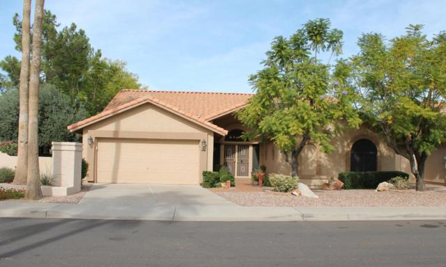 9148 W Palm Tree Drive, Peoria, AZ 85382 (MLS #5690881) :: Devor Real Estate Associates