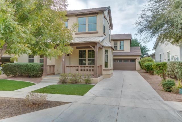 15467 W Windrose Drive, Surprise, AZ 85379 (MLS #5690900) :: The Laughton Team