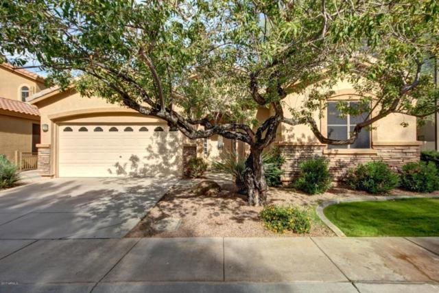 1940 W Park Place, Chandler, AZ 85224 (MLS #5690913) :: Revelation Real Estate