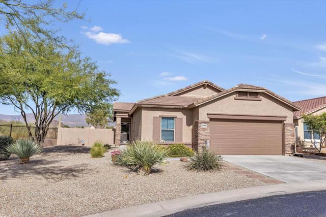 18086 E El Viejo Desierto, Gold Canyon, AZ 85118 (MLS #5690937) :: The Kenny Klaus Team