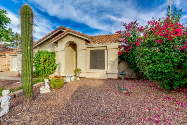 803 N Laveen Drive, Chandler, AZ 85226 (MLS #5690942) :: Revelation Real Estate