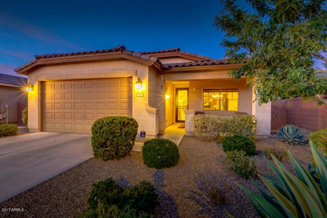 270 W Lyle Avenue, San Tan Valley, AZ 85140 (MLS #5690959) :: The Everest Team at My Home Group