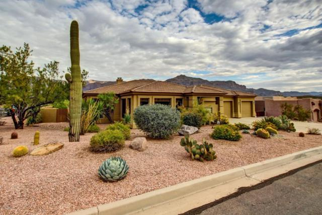 9784 E Little Nugget Way, Gold Canyon, AZ 85118 (MLS #5690991) :: The Kenny Klaus Team
