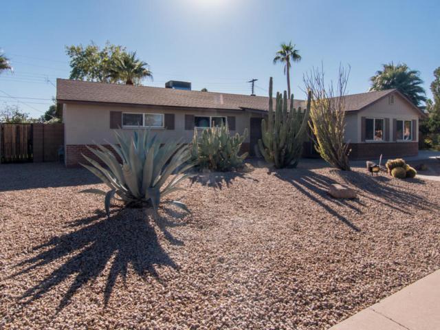 1539 W Golden Lane, Phoenix, AZ 85021 (MLS #5691025) :: Revelation Real Estate