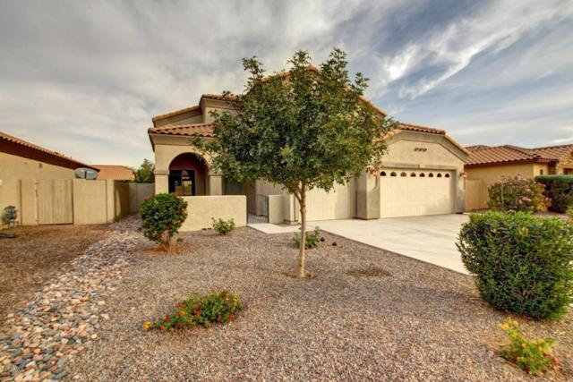 2072 E Jade Drive, Chandler, AZ 85286 (MLS #5691080) :: The Everest Team at My Home Group