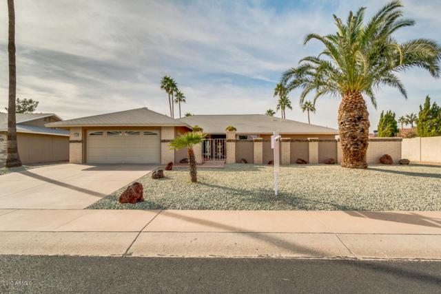 17618 N Conestoga Drive, Sun City, AZ 85373 (MLS #5691081) :: Devor Real Estate Associates