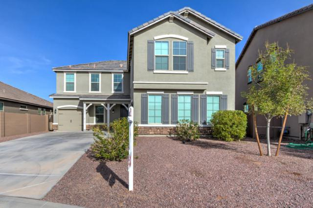 2302 W Windy Basin Court, San Tan Valley, AZ 85142 (MLS #5691085) :: The Everest Team at My Home Group