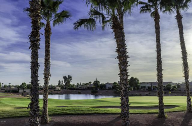 13219 W Junipero Drive, Sun City West, AZ 85375 (MLS #5691126) :: Desert Home Premier