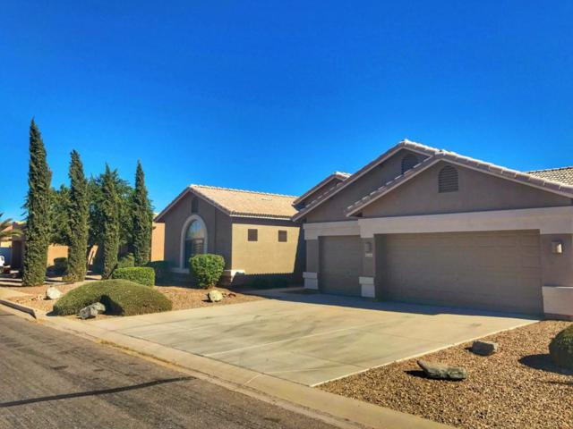 31261 N Trail Dust Drive, San Tan Valley, AZ 85143 (MLS #5691161) :: The Everest Team at My Home Group