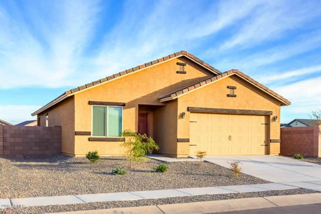 24394 W Atlanta Avenue, Buckeye, AZ 85326 (MLS #5691167) :: Devor Real Estate Associates