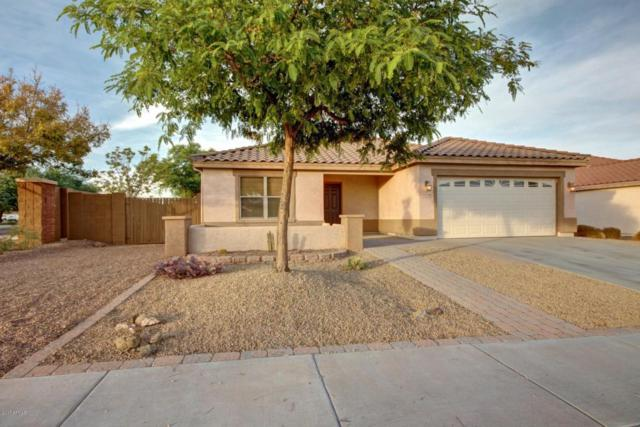 15670 W Crocus Drive, Surprise, AZ 85379 (MLS #5691174) :: The Everest Team at My Home Group