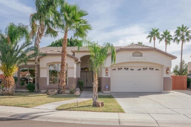 6509 W Piute Avenue, Glendale, AZ 85308 (MLS #5691195) :: Devor Real Estate Associates