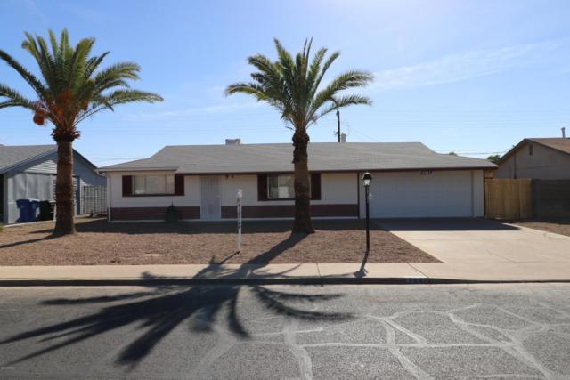 2061 E Birchwood Avenue, Mesa, AZ 85204 (MLS #5691212) :: Revelation Real Estate