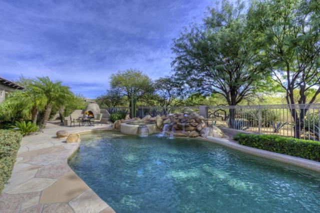 10911 E Skinner Drive, Scottsdale, AZ 85262 (MLS #5691227) :: The Everest Team at My Home Group
