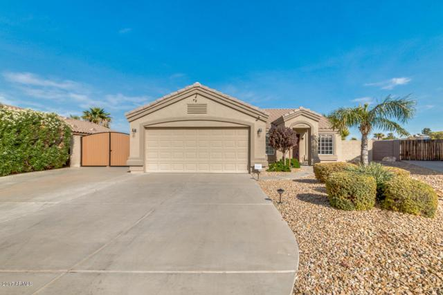 11102 W Madeline Christian Avenue, Surprise, AZ 85378 (MLS #5691247) :: The Everest Team at My Home Group