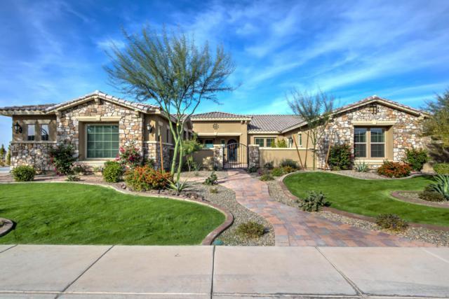 3124 E Blackhawk Drive, Gilbert, AZ 85298 (MLS #5691260) :: The Kenny Klaus Team