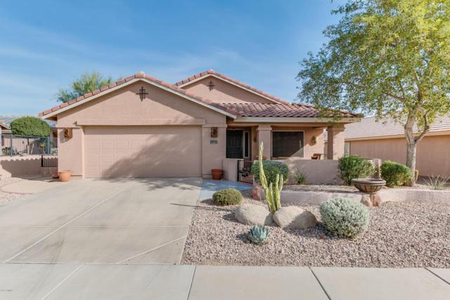 557 S 231ST Drive, Buckeye, AZ 85326 (MLS #5691271) :: Devor Real Estate Associates
