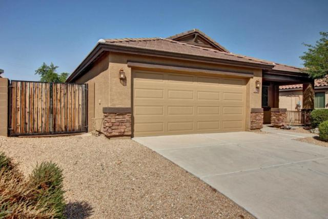 2223 S Hughes Drive, Buckeye, AZ 85326 (MLS #5691295) :: Devor Real Estate Associates