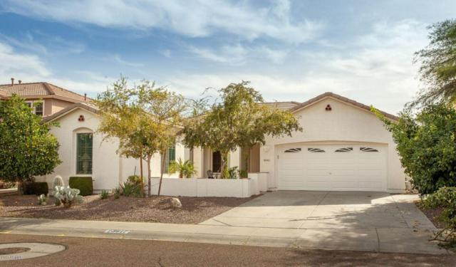 3617 W Buckhorn Trail, Phoenix, AZ 85083 (MLS #5691320) :: The Everest Team at My Home Group