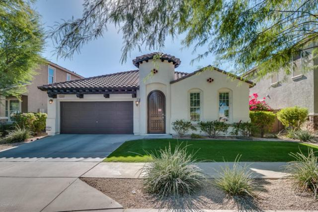 2209 E Grenadine Road, Phoenix, AZ 85040 (MLS #5691326) :: The Everest Team at My Home Group