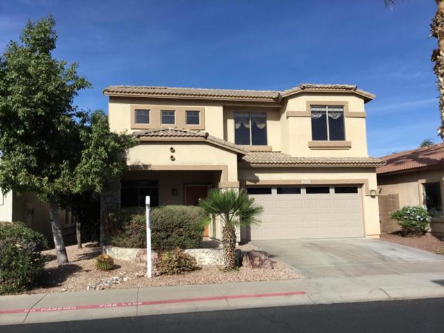 9930 E Farmdale Avenue, Mesa, AZ 85208 (MLS #5691337) :: The Everest Team at My Home Group