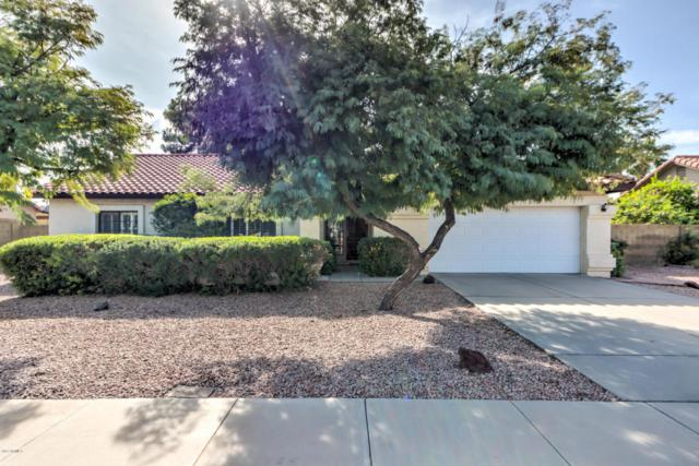 937 E Knight Lane, Tempe, AZ 85284 (MLS #5691358) :: The Everest Team at My Home Group