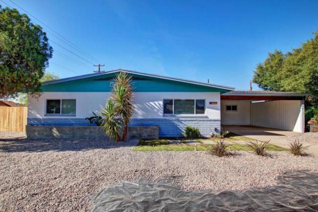 2455 E Alpine Avenue, Mesa, AZ 85204 (MLS #5691359) :: The Everest Team at My Home Group