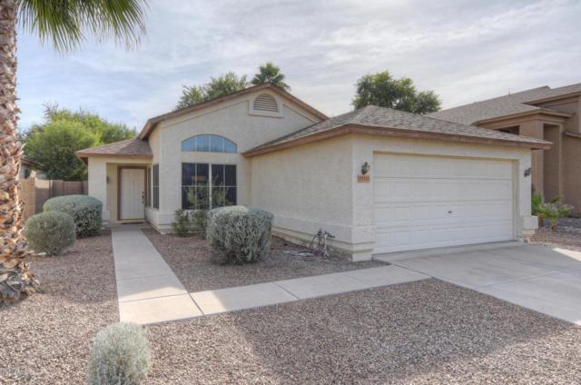 17111 N Larkspur Lane, Surprise, AZ 85374 (MLS #5691378) :: Arizona Best Real Estate