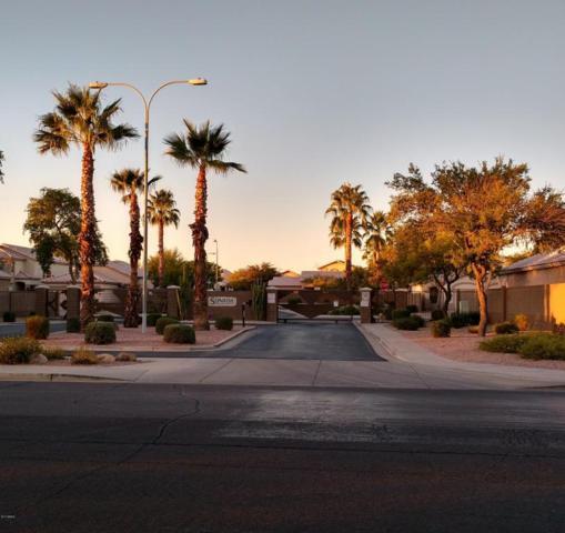530 S 100TH Way, Mesa, AZ 85208 (MLS #5691381) :: Arizona Best Real Estate