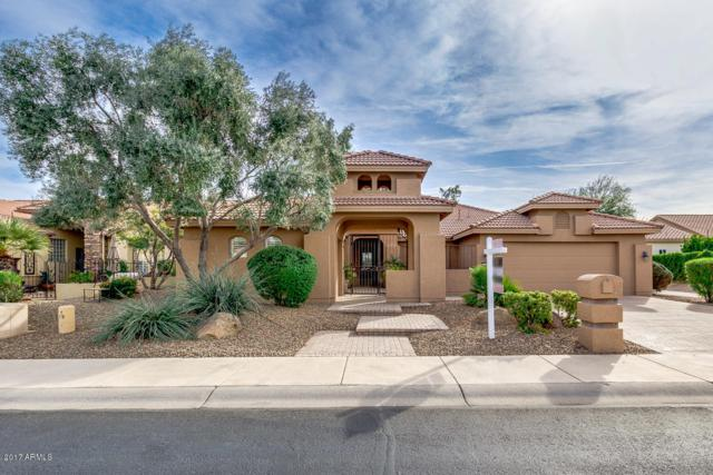 16253 W Indianola Avenue, Goodyear, AZ 85395 (MLS #5691473) :: Kortright Group - West USA Realty