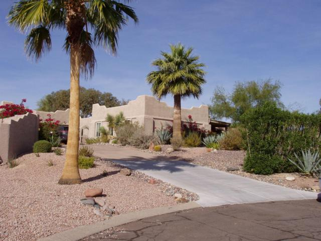 11422 N Cameron Court, Fountain Hills, AZ 85268 (MLS #5691627) :: Santizo Realty Group