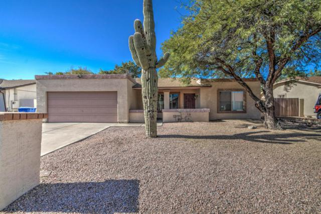 20620 N 18TH Avenue, Phoenix, AZ 85027 (MLS #5691652) :: Cambridge Properties