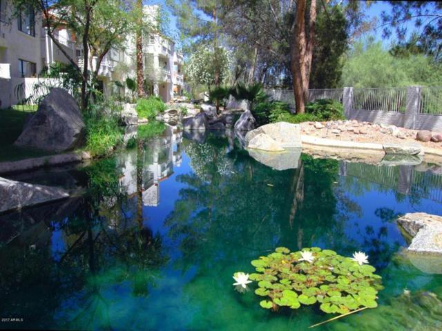 10080 E Mountainview Lake Drive A202, Scottsdale, AZ 85258 (MLS #5691668) :: Brett Tanner Home Selling Team