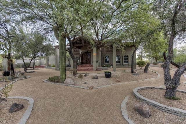 12430 E Cayuse Court, Scottsdale, AZ 85259 (MLS #5691761) :: The Everest Team at My Home Group