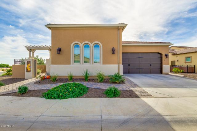 173 E Kennedia Drive, San Tan Valley, AZ 85140 (MLS #5691949) :: The Everest Team at My Home Group