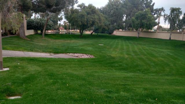 14355 W Winding Trail, Surprise, AZ 85374 (MLS #5692494) :: Desert Home Premier
