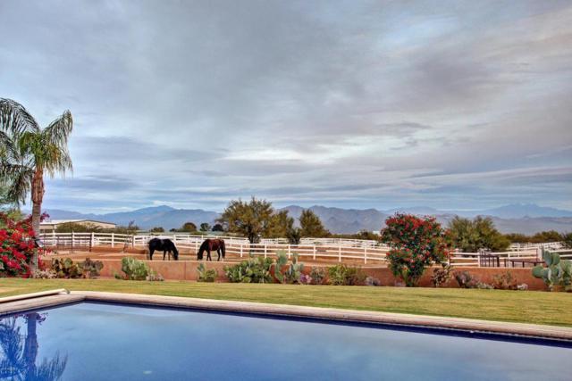 31130 N 151ST Street, Scottsdale, AZ 85262 (MLS #5692495) :: Desert Home Premier