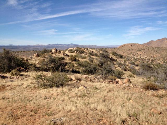 Lot 119 Round Turn Drive, Kingman, AZ 86401 (MLS #5692533) :: Brett Tanner Home Selling Team