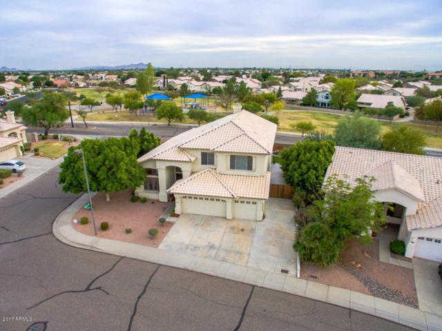 5647 W Irma Lane, Glendale, AZ 85308 (MLS #5693087) :: Essential Properties, Inc.