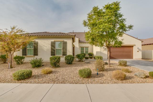 2384 N 161ST Avenue, Goodyear, AZ 85395 (MLS #5693218) :: Essential Properties, Inc.