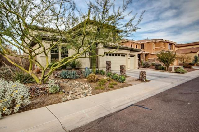 2510 W Piedmont Road, Phoenix, AZ 85041 (MLS #5693273) :: Lifestyle Partners Team