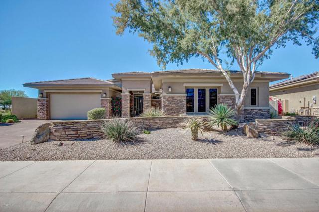 18122 W Narramore Road, Goodyear, AZ 85338 (MLS #5693508) :: Kortright Group - West USA Realty