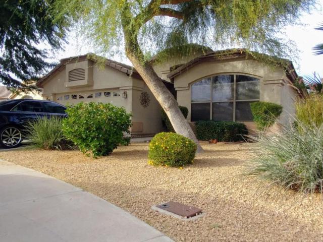 12560 W Coronado Road, Avondale, AZ 85392 (MLS #5693547) :: My Home Group