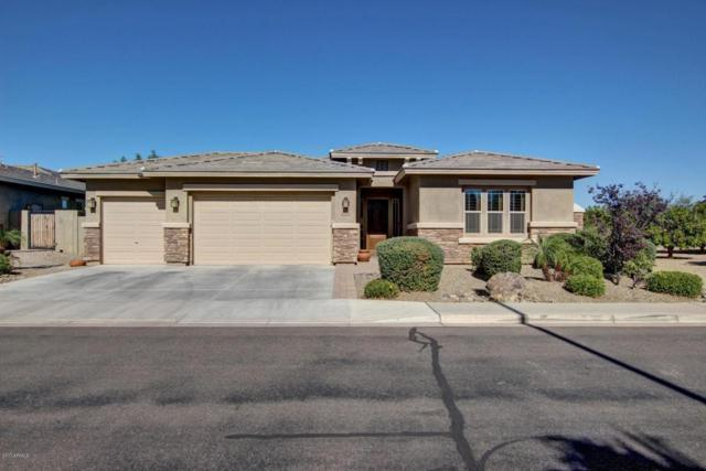 6651 S Lyon Drive, Gilbert, AZ 85298 (MLS #5693548) :: The Everest Team at My Home Group