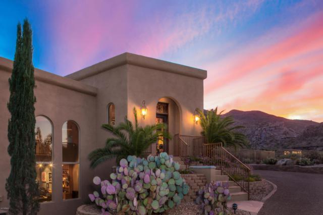 36622 N Tom Darlington Drive, Carefree, AZ 85377 (MLS #5693555) :: Arizona Best Real Estate