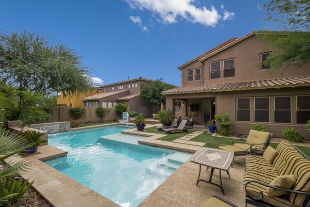 3978 E Sandpiper Drive, Phoenix, AZ 85050 (MLS #5693705) :: The Everest Team at My Home Group