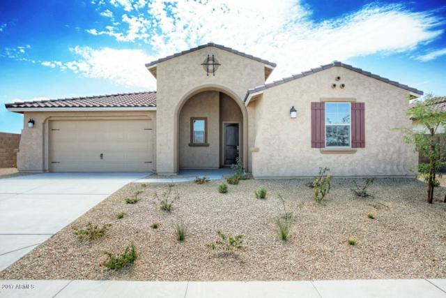 15236 S 183RD Avenue, Goodyear, AZ 85338 (MLS #5693728) :: Kortright Group - West USA Realty