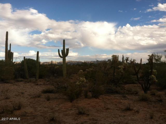 0 E Leota Place, Marana, AZ 85658 (MLS #5693737) :: Phoenix Property Group
