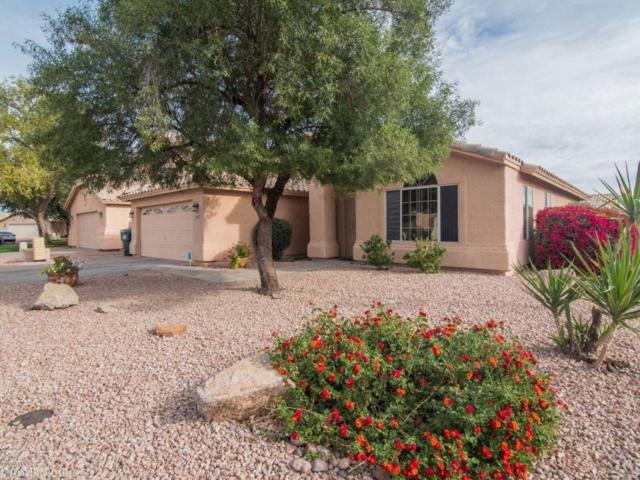 20403 N 28TH Place, Phoenix, AZ 85050 (MLS #5693861) :: Cambridge Properties